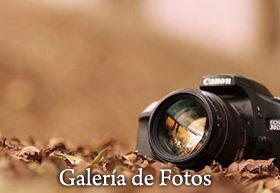 bt-fotos-ampuero