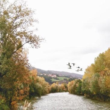 El otoño en Ampuero invita a dar un paseo
