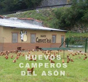 Huevos Camperos del Asón